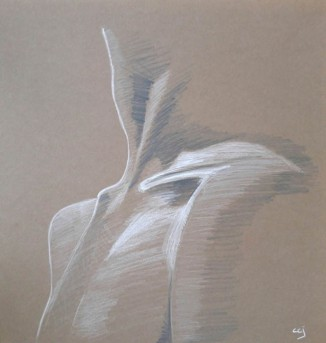 Schets Collarbone
